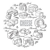 circular background of different cheese top view Vector illustration