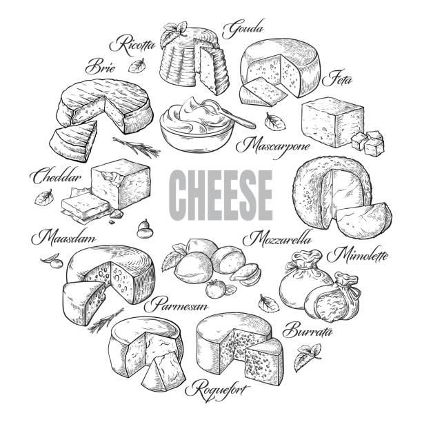 kreisförmige hintergrund verschiedene käse-draufsicht - ricotta stock-grafiken, -clipart, -cartoons und -symbole