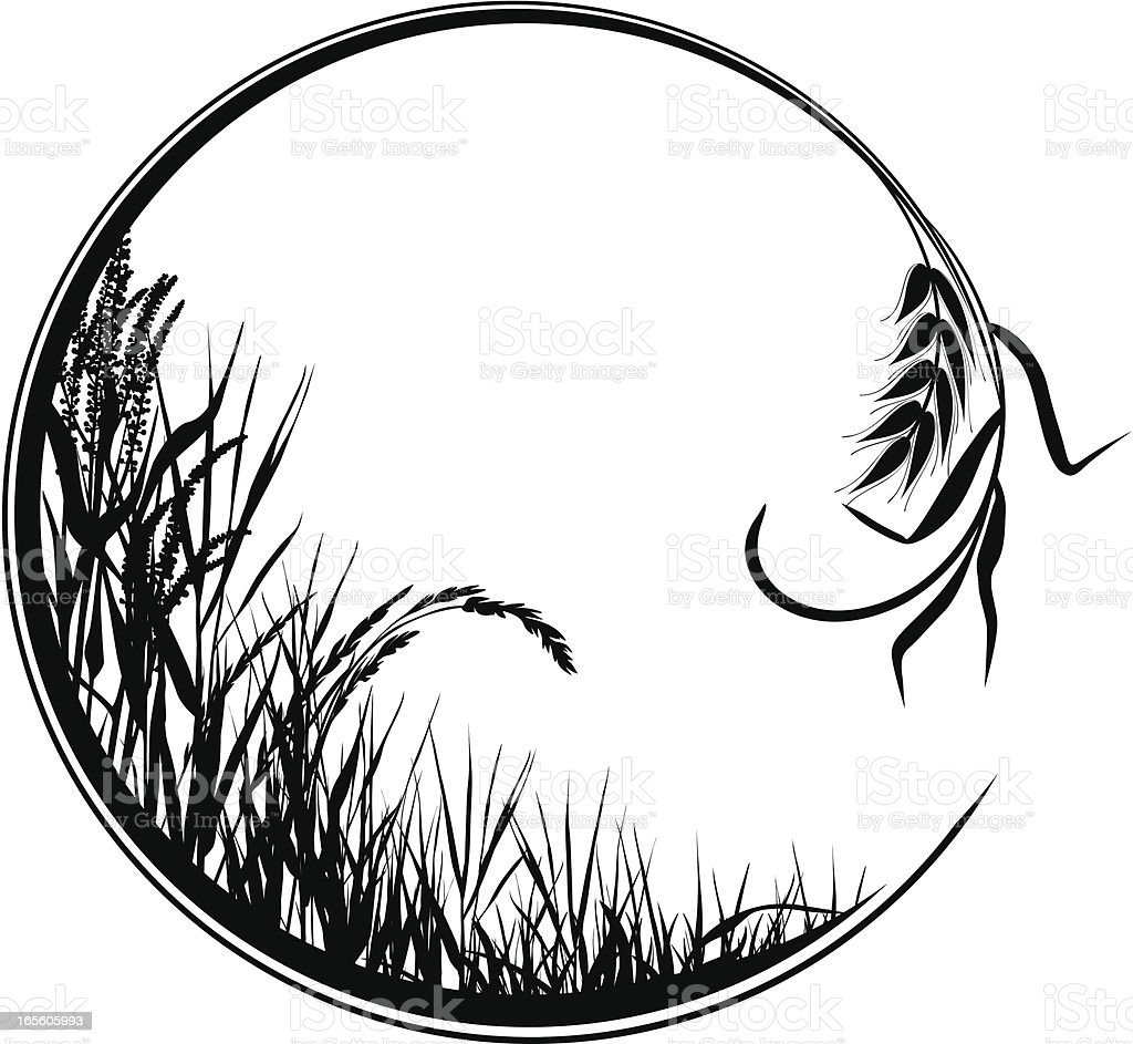 Circular grass frame royalty-free circular grass frame stock vector art & more images of agriculture