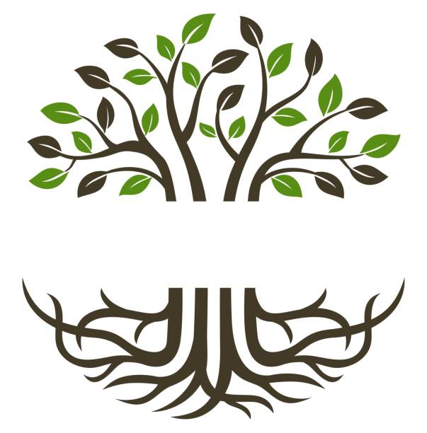 Circular trees and roots Circular trees and roots suitable for icons, logos, symbols and more trees stock illustrations