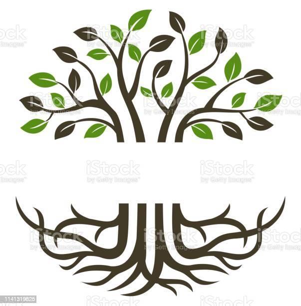 Circular Trees And Roots - Arte vetorial de stock e mais imagens de Arte