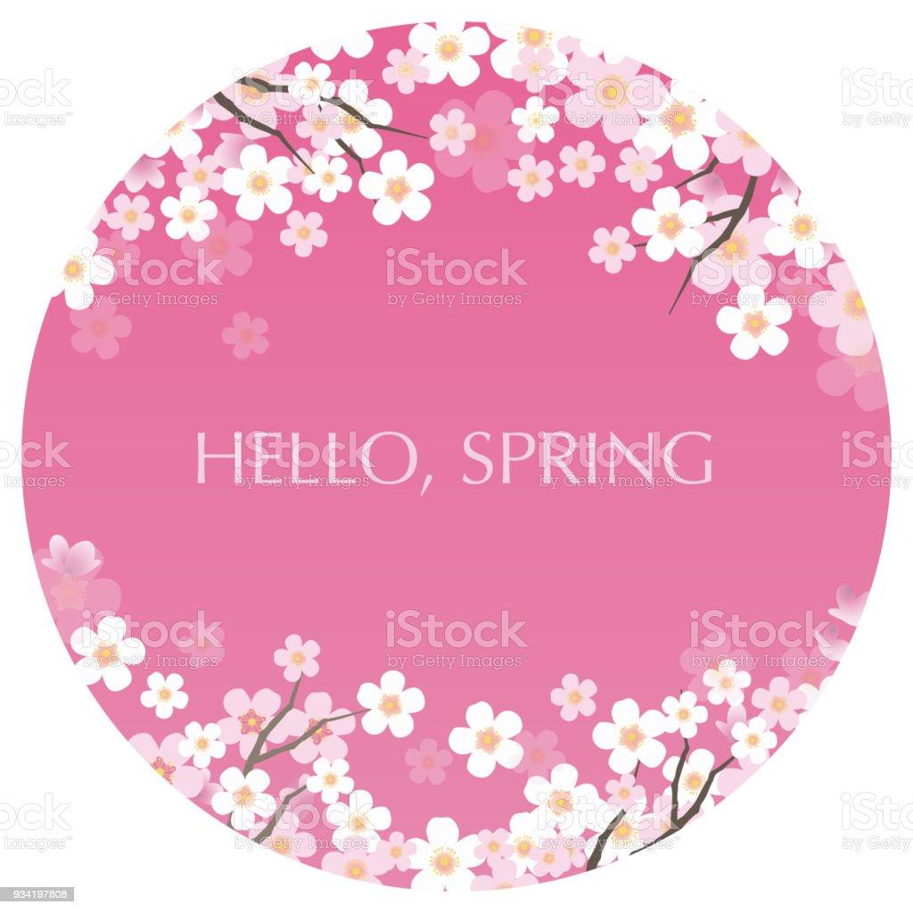 Kreisförmige Hintergrund Vektorgrafik Mit Kirschblüten In Voller ...