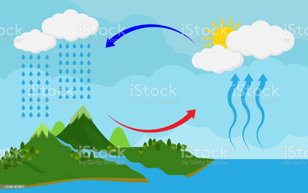 Circulation Cycle And Water Condensationdiagram Showing The Water Cycle In Naturevector Illustration And Icon Stock Illustration Download Image Now Istock