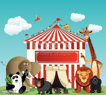 Circus and Animals