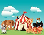 Vector Circus and Animals