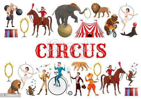 Circus entertainment show poster of wild animals tamer with lion in fire ring and elephant balancing on ball. Vector clown, muscleman and bear on bicycle, illusionist juggling and horse rider