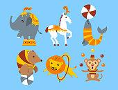 Circus trained elephant, horse, seal, bear, lion, monkey animals vector illustration.