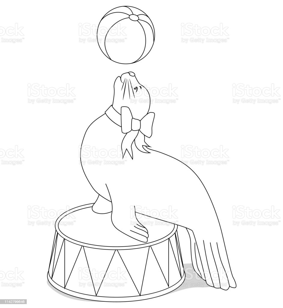 Circus Seal With A Ball For Coloring Book Stock Illustration ...