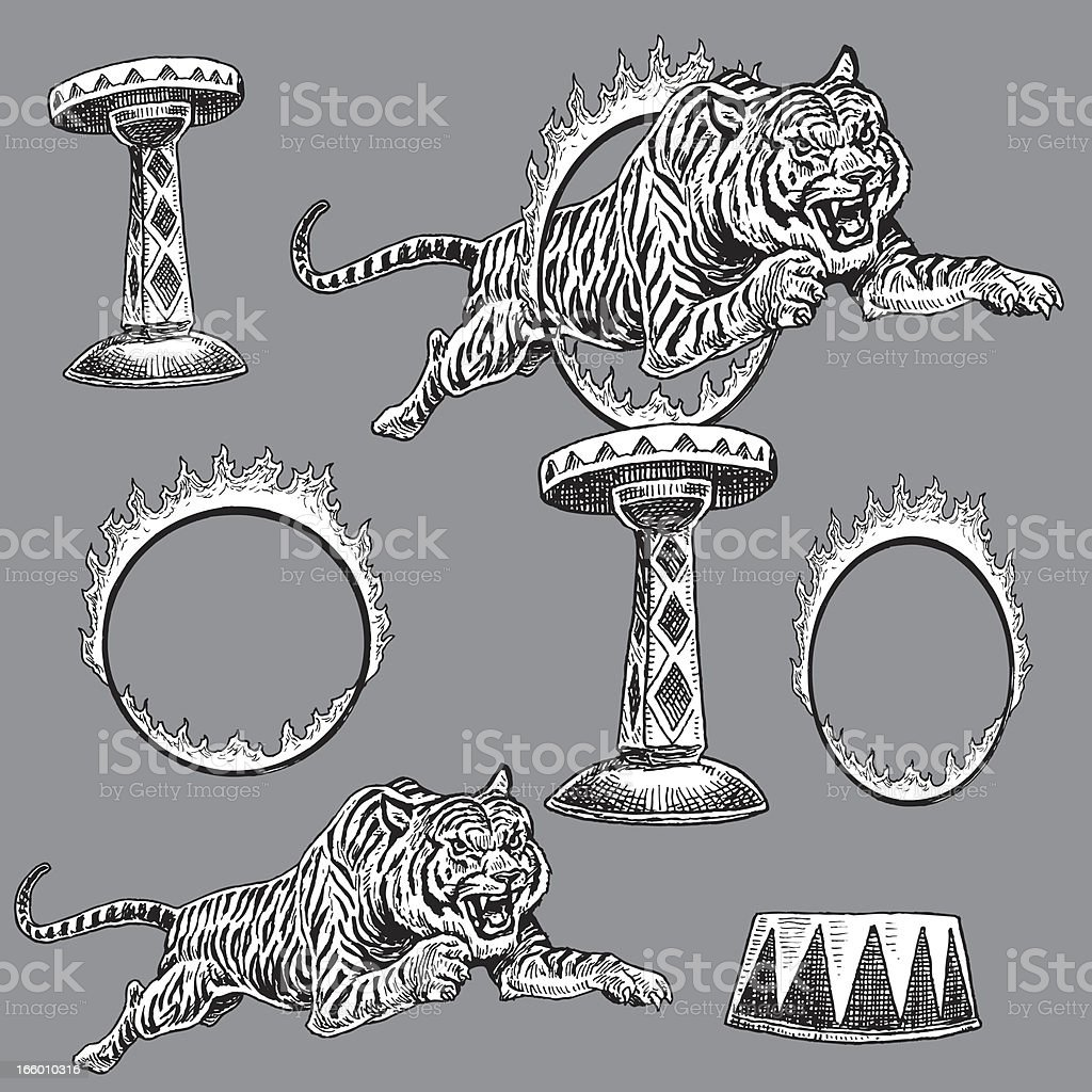 Circus Tiger and Flaming Ring of Fire vector art illustration