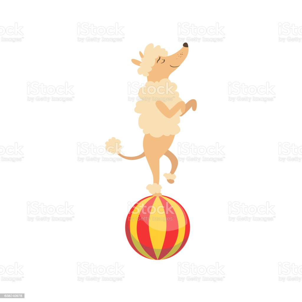 Circus Trained Poodle Dog Animal Artist Performing vector art illustration