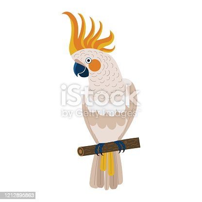 Citron-crested Cockatoo parrot sitting on brunch. Colorful exotic bird with orange crest in cartoon style illustration on white background.