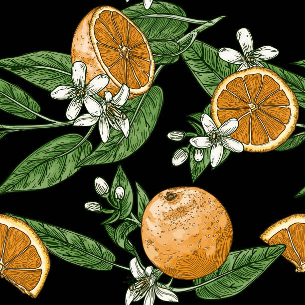 Citrus and Orange Blossom Vintage Retro Style Seamless Pattern vector art illustration