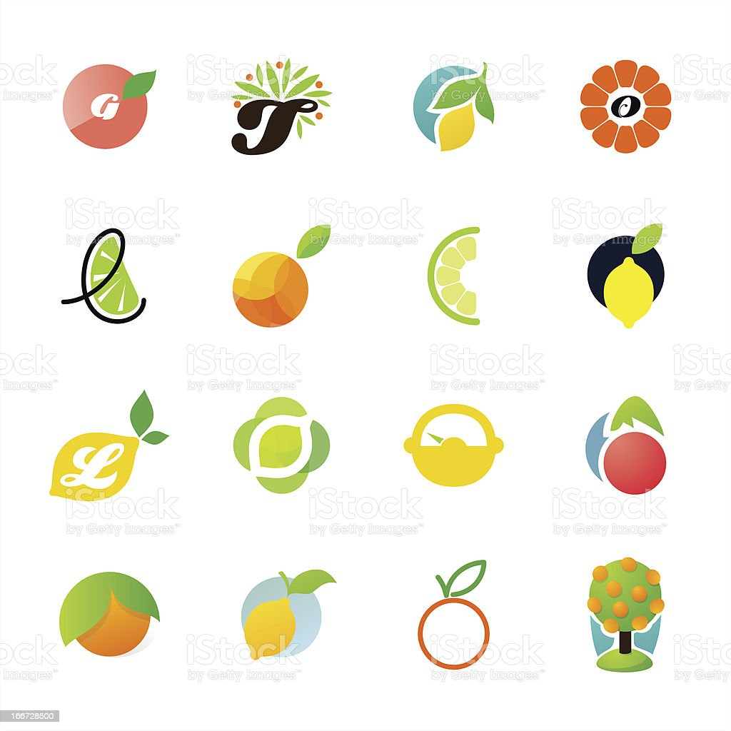 Citrus family. Elements for design royalty-free stock vector art