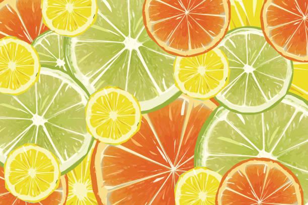 illustrazioni stock, clip art, cartoni animati e icone di tendenza di citrus fruit background - lemons, oranges and limes stock illustration - healthy green juice