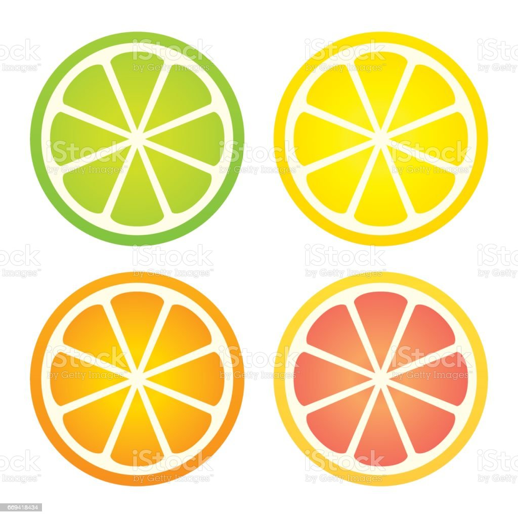 Citrus fruit icon set vector art illustration