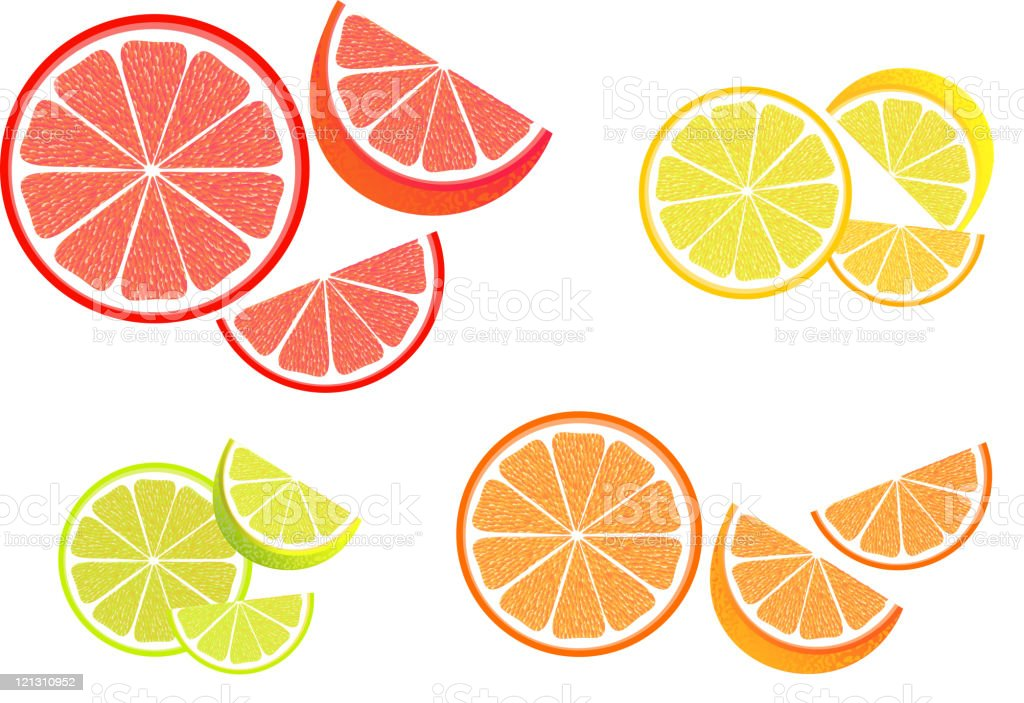 Citrus Fruit Slices royalty-free stock vector art