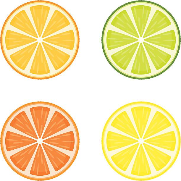 bildbanksillustrationer, clip art samt tecknat material och ikoner med citrus fruit slices - apelsin