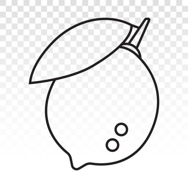 Citrus lemon fruit with leaf line art icon Citrus lemon fruit with leaf line art icon for apps and websites limoen stock illustrations