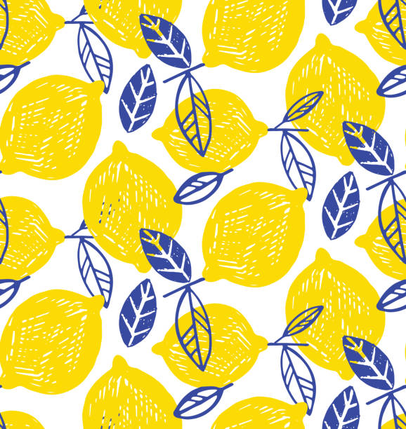 Citrus lemon lime doodle pattern background Citrus pattern lemon fruit stock illustrations