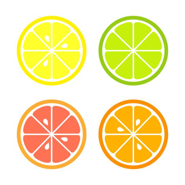 Citrus slices icons Citrus slices of lemon, orange, lime and grapefruit. Vector illustration lime stock illustrations