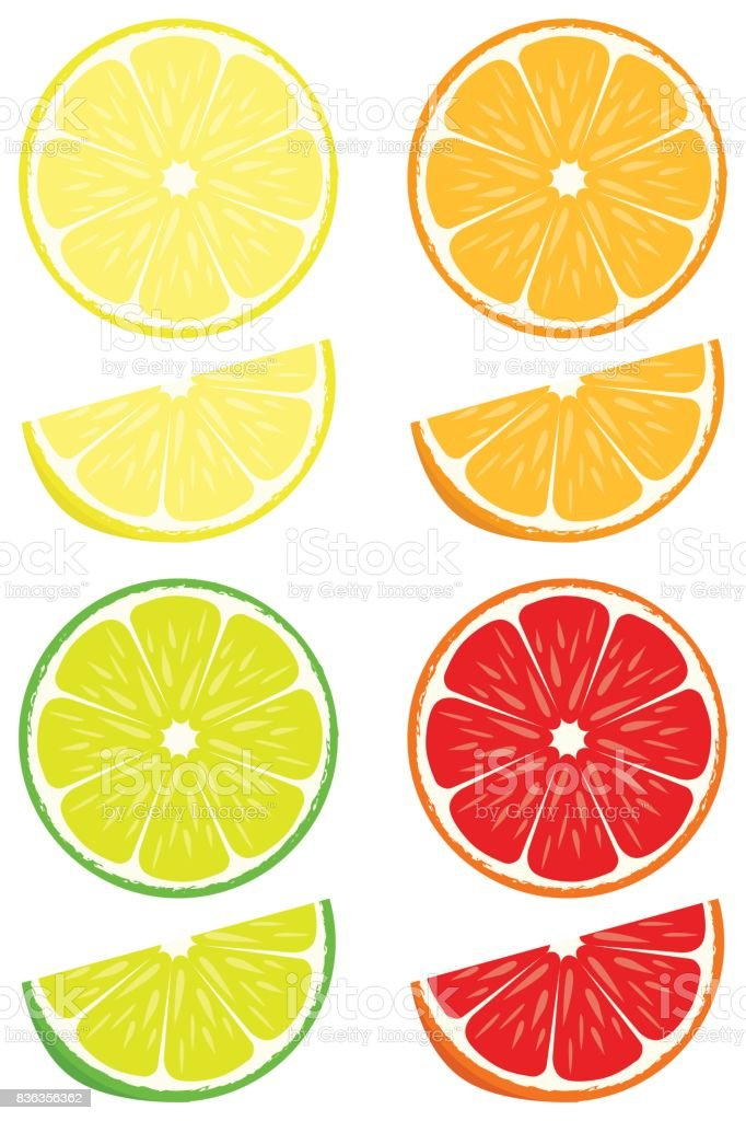 Citrus slices vector set