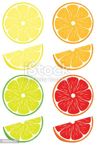 Citrus Slices Vector Set Stock Vector Art & More Images of ...