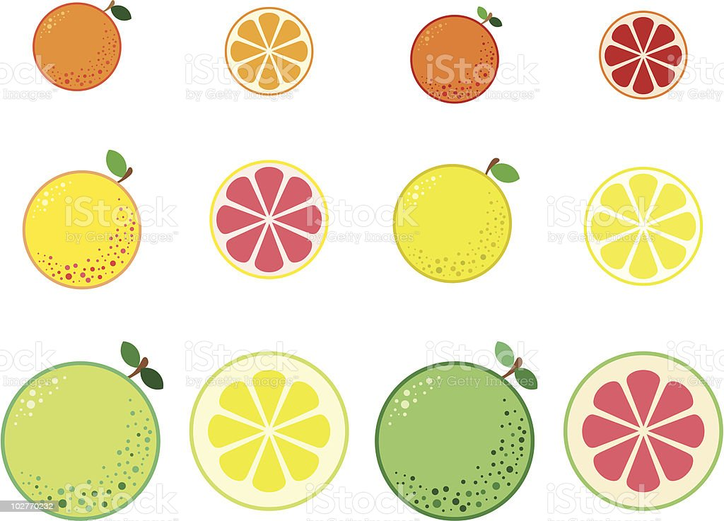 Citrus vector art illustration