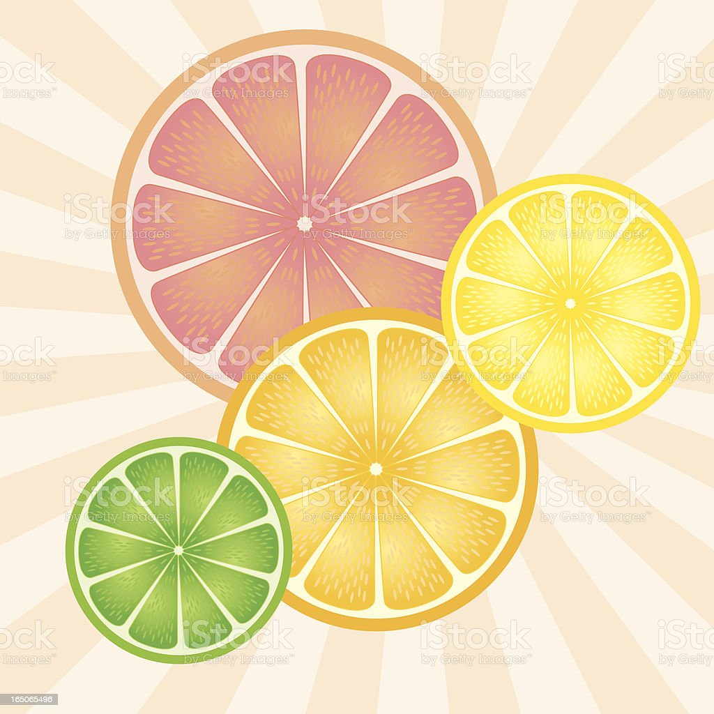 Citrus royalty-free stock vector art