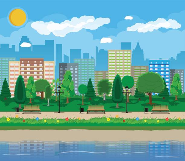 City park concept City park and pond, wooden bench, street lamp, waste bin in square. Cityscape with buildings and trees. Sky with clouds and sun. Leisure time in summer city park. Vector illustration in flat style waterfront stock illustrations
