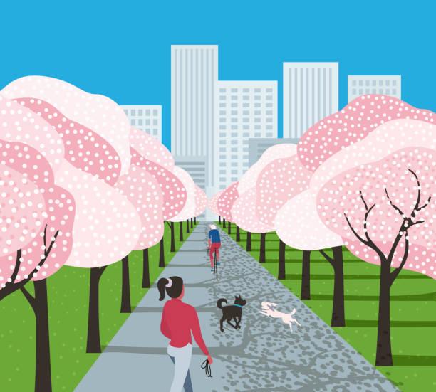 bildbanksillustrationer, clip art samt tecknat material och ikoner med stads park fritid aktivitet tecknad serie - gränd