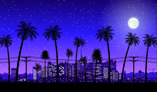 City skyline silhouette at night City skyline silhouette at dusk. Skyscappers, towers, office and residental buildings. Cityscape under night sky, moon and palm tree. Vector illustration miami stock illustrations