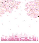 説明 :  Cityscape of the silhouette and flower of a cherry tree
