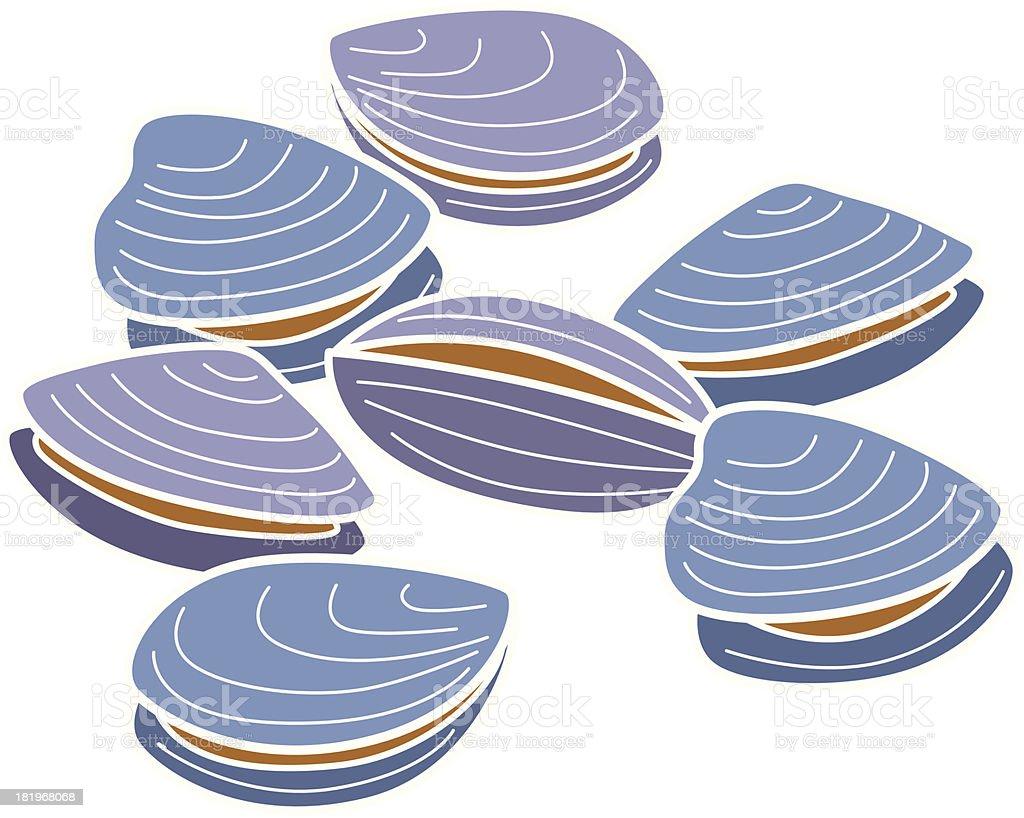 clams vector art illustration