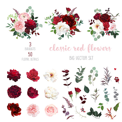 Classic luxurious red and peachy roses, pink carnation, ranunculus, dahlia, white peony