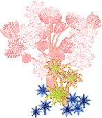 Clavularia, pumping xenia - soft coral