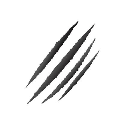 Claw scratch vector, animal claw scratch