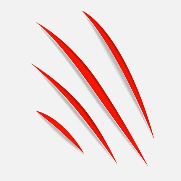 illustrazioni stock, clip art, cartoni animati e icone di tendenza di claw vecror scratches - thriller