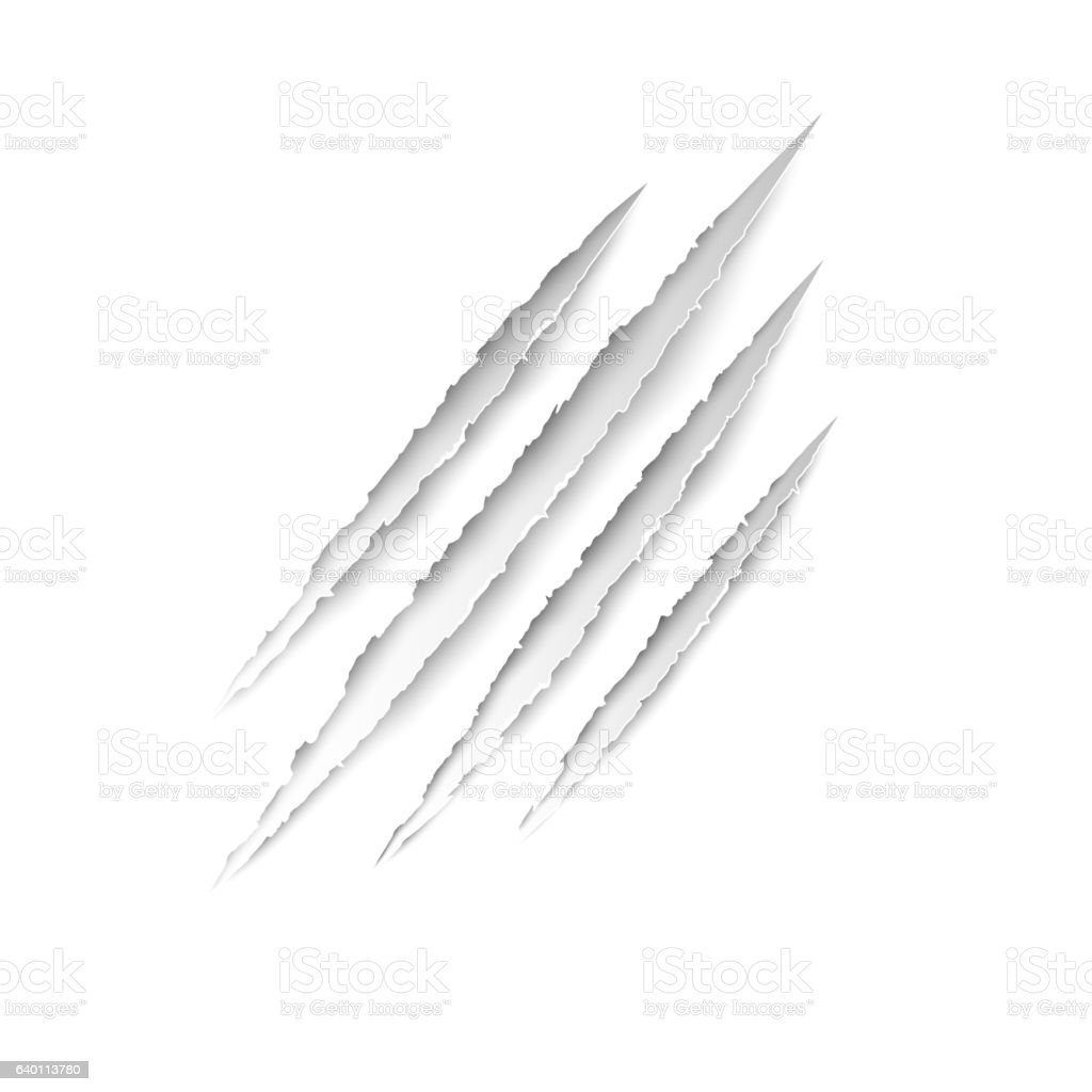 Claws animal scratches on white paper background. Vector scratch set. vector art illustration