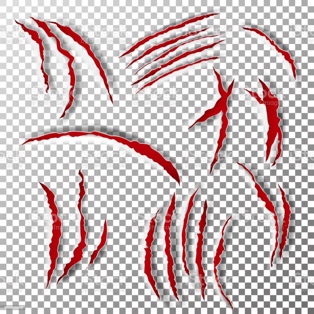 Claws Scratches Vector. Claw Scratch Mark. Bear Or Tiger Paw Claw Scratch Bloody. Shredded Paper vector art illustration