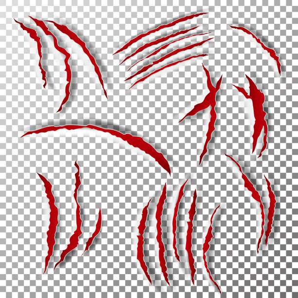 Claws Scratches Vector. Claw Scratch Mark. Bear Or Tiger Paw Claw Scratch Bloody. Shredded Paper Claws Scratches Vector. Claw Scratch Mark. Bear, Tiger Paw Claw Scratch Bloody. Shredded Paper werewolf stock illustrations