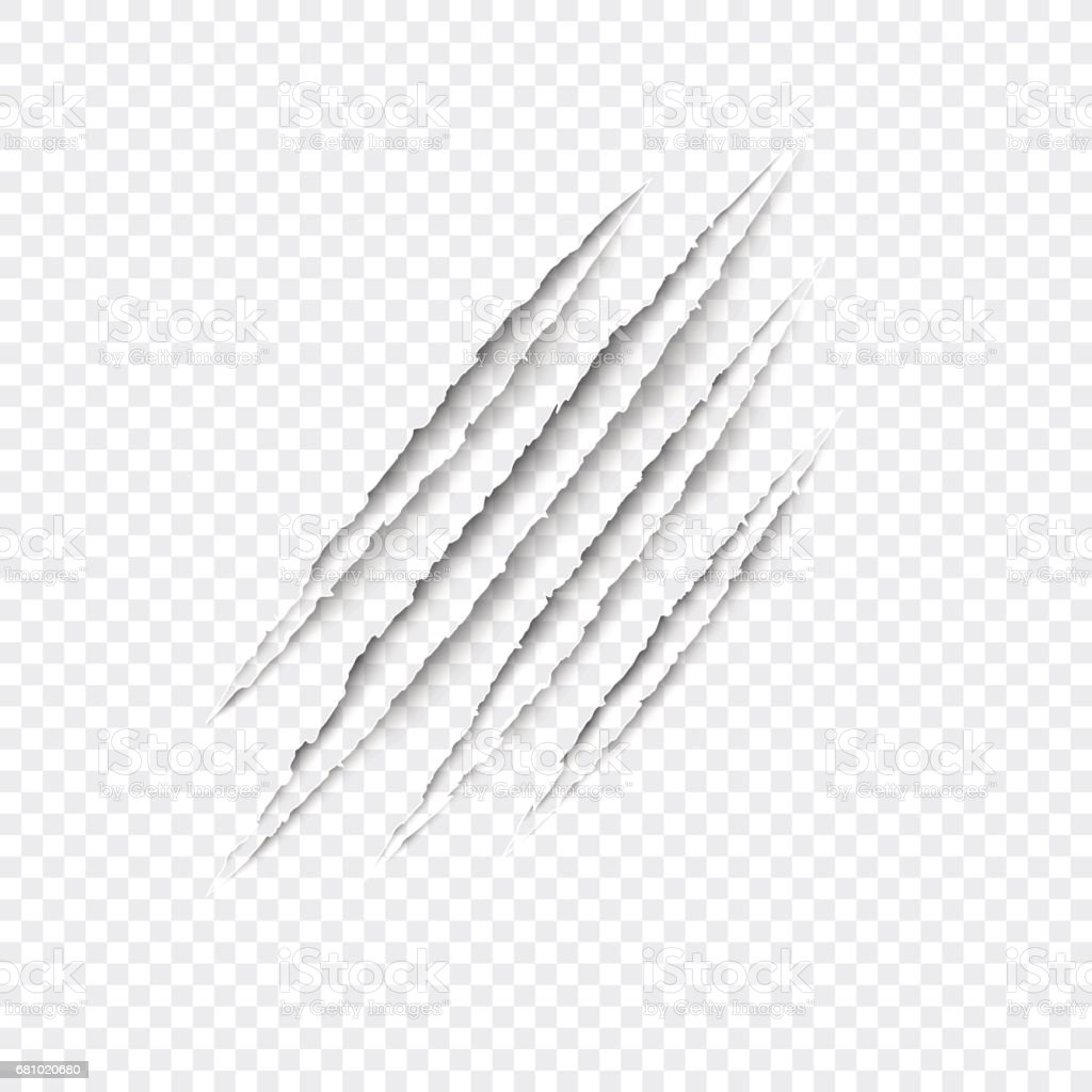 Claws scratches - vector isolated on transparent background. vector art illustration