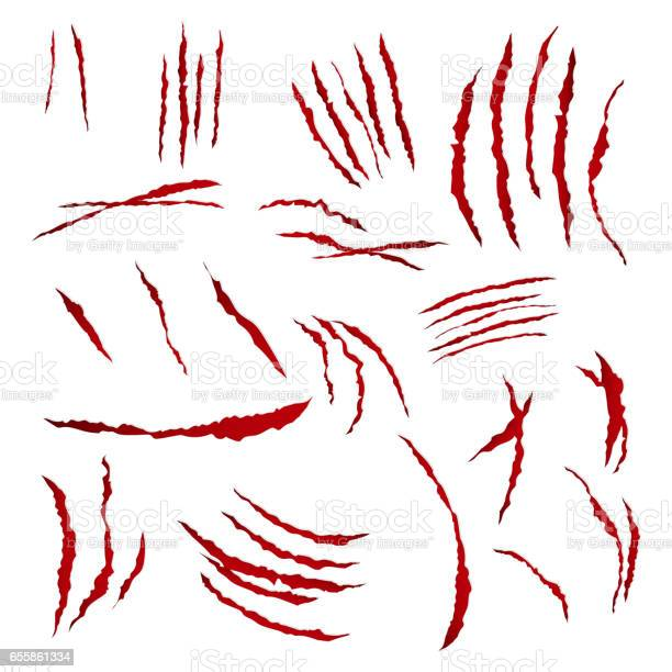 Claws scratches vector isolated on white background bear or tiger paw vector id655861334?b=1&k=6&m=655861334&s=612x612&h=rvoeklk5efleajubyloixwgrenfvfzoonwzngr zd0s=