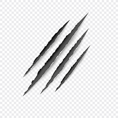 Claws scratches. Vector scratch set isolated on gray background.