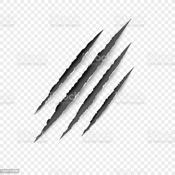 Claws scratches vector scratch set isolated on gray background vector id640113598?b=1&k=6&m=640113598&s=612x612&h=zmbpd0scybzq2qabzejmq0bukmnwwkas6qfpquljqlm=