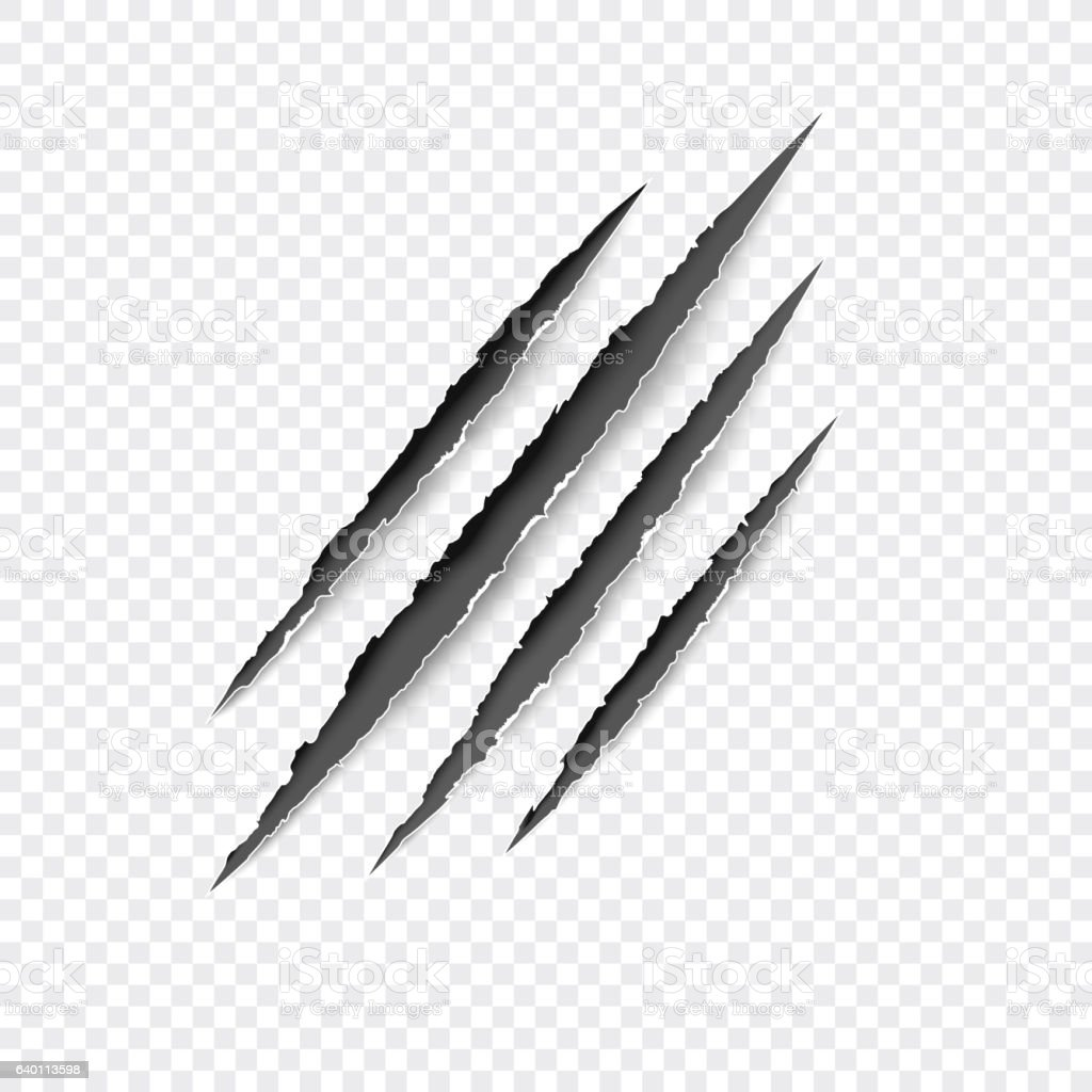 Claws scratches. Vector scratch set isolated on gray background. - ilustración de arte vectorial