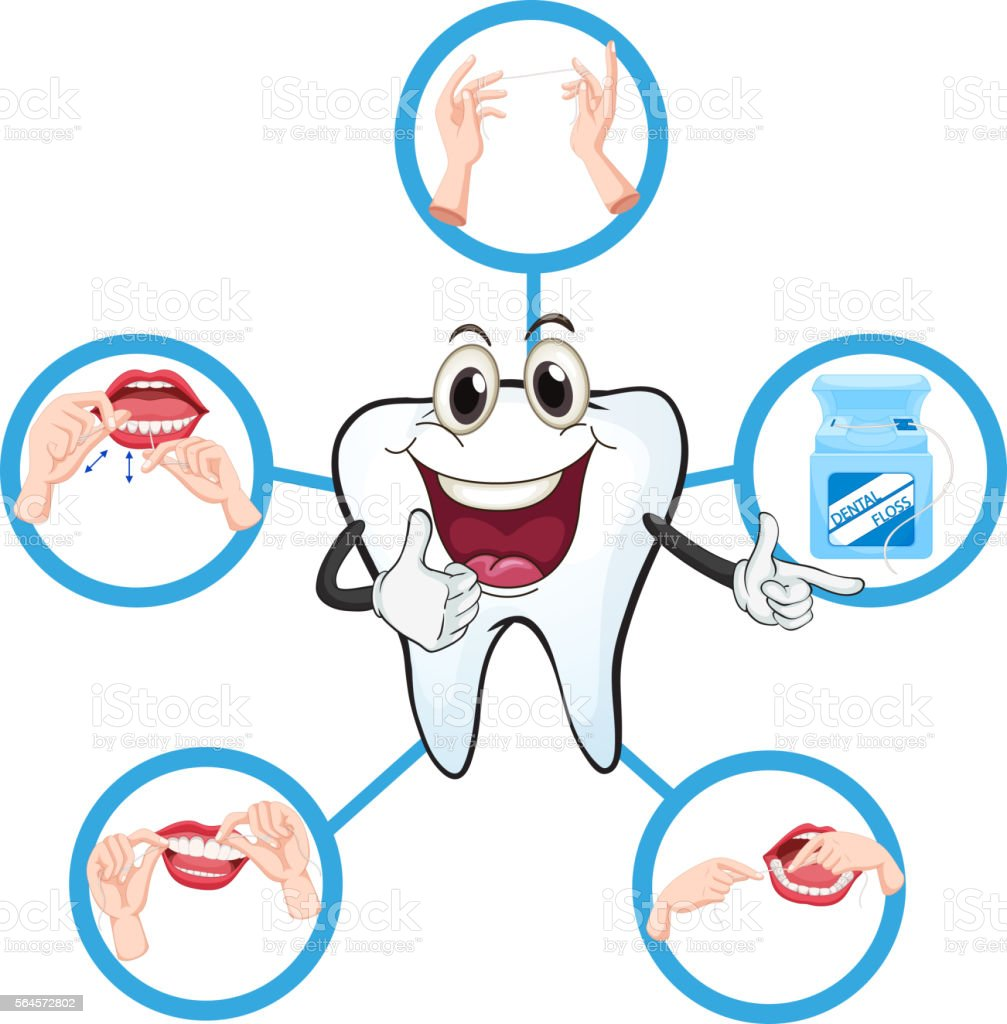 Clean tooth and process of flossing vector art illustration