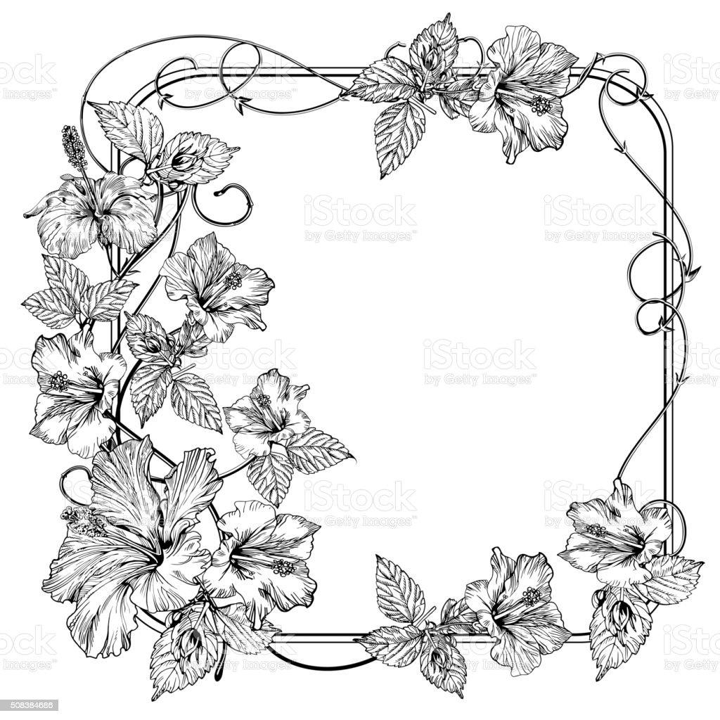 Ilustracion De Clematis Flor Flores Vintage Elegante Vector De