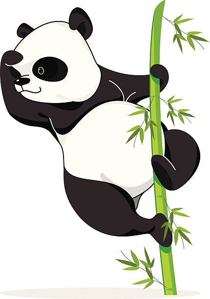Climbing Panda vector art illustration