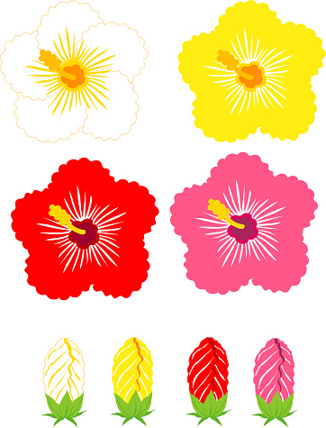 Clip art of hibiscus flower and bud