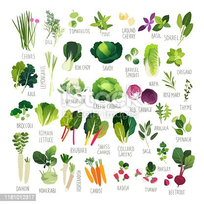 Clipart collection of mini vegetable icons and common culinary herbs